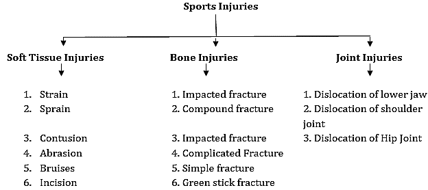 Sports Medicine Class 12 Notes Physical Education