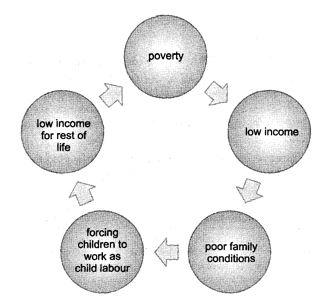 Poverty Class 12 Economics Important Questions