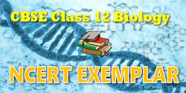 NCERT Exemplar Problems Class 12 Biology