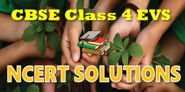 NCERT solutions for class 4 EVS