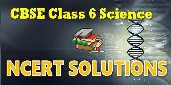 NCERT Solutions class for 6 science