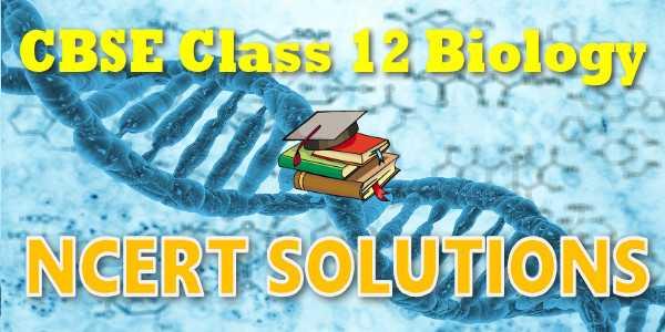 NCERT solutions for class 12 Biology