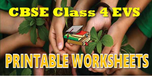 CBSE Printable Worksheets class 4 EVS Things we make and do