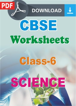 Class 6 science worksheets pdf ibookread Download
